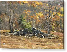 Rock Pile In Maine Blueberry Field Acrylic Print