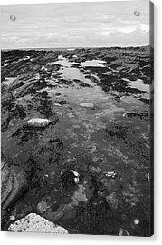 Rock Pool Acrylic Print by Steve Watson