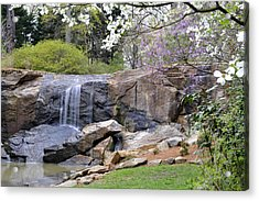 Rock Quarry Falls In Greenville Sc Cleveland Park Acrylic Print