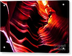 Belly Of The Beast Acrylic Print