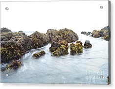 Rock The Seascape Acrylic Print by Sheldon Blackwell