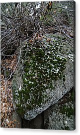 Rock With Lichen And Snow Acrylic Print