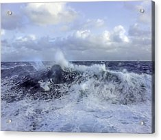 Rocking And Rolling In The Deep Sea Acrylic Print