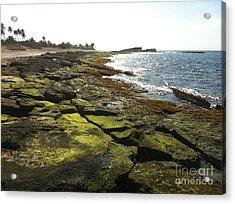 Rocks In Puerto Rico Acrylic Print by Sean Hughes