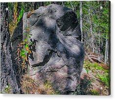 Rocky Ancestor Acrylic Print by Omaste Witkowski