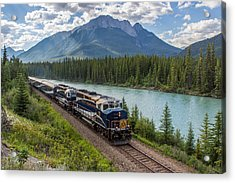 Rocky Mountaineer At Muleshoe On The Bow River Acrylic Print