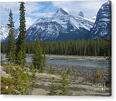 Rocky Mountains - Sunwapta River Acrylic Print