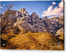 Acrylic Print featuring the photograph Rocky Peaks by Mark Myhaver