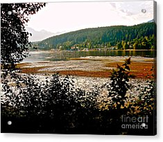Rocky Point Port Moody Acrylic Print by Sher Nasser