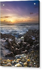 Rocky Shore Acrylic Print by Debra and Dave Vanderlaan