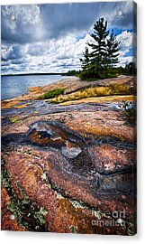 Rocky Shore Of Georgian Bay Acrylic Print by Elena Elisseeva