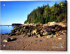 Rocky Shoreline Deer Isle Maine Acrylic Print by Thomas R Fletcher