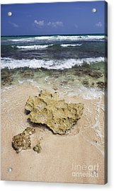 Rocky Shoreline In Tulum Acrylic Print