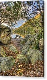 Rocky Shore's Acrylic Print by Darren Wilkes