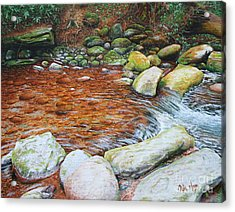 Rocky Stream Acrylic Print by Mike Ivey