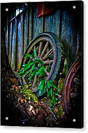 Roll No More Acrylic Print