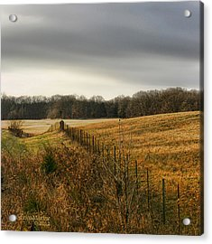 Acrylic Print featuring the photograph Rolling Field by EricaMaxine  Price