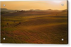 Acrylic Print featuring the photograph Tuscany - Rolling by Francesco Emanuele Carucci