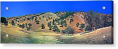 Rolling Hills In The Summer Acrylic Print by Wernher Krutein