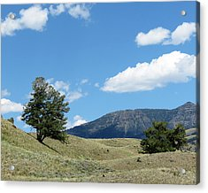 Rolling Hills Acrylic Print by Laurel Powell