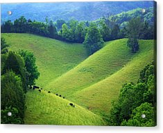 Rolling Hills Of Tennessee Acrylic Print