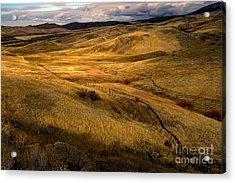 Rolling Hills Acrylic Print by Robert Bales