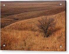 Acrylic Print featuring the photograph Rolling Hills by Scott Bean