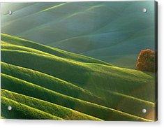 Rolling Tuscany Landscape At Evening Acrylic Print by Pavliha