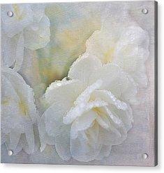 Romance In White Acrylic Print