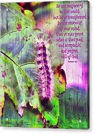 Romans 12 2 Acrylic Print by Michelle Greene Wheeler