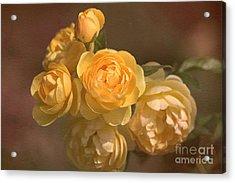 Romantic Roses Acrylic Print by Joy Watson