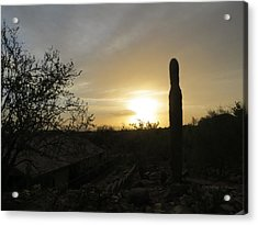 Acrylic Print featuring the photograph Rooftops At Desert Sunset by Jean Marie Maggi