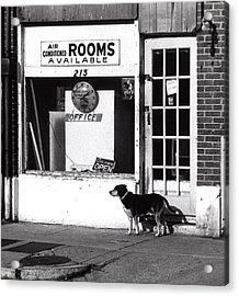 Rooms Available Acrylic Print by Steven Huszar