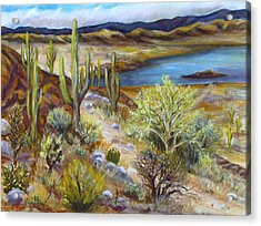 Roosevelt Lake Acrylic Print by Caroline Owen-Doar
