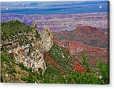 Roosevelt Point Two On North Rim/grand Canyon National Park-arizona   Acrylic Print by Ruth Hager