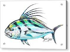 Rooster Fish Study Acrylic Print by Savlen Art