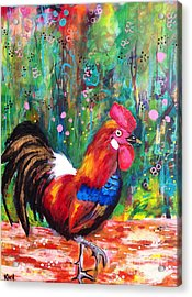 Rooster Acrylic Print by Kim Heil