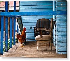 Rooster On Porch  Acrylic Print by Robert Watcher