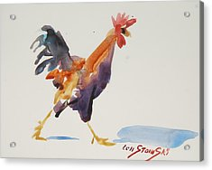Rooster Study 2 Acrylic Print
