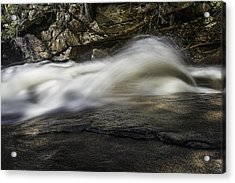 Rooster Tail Acrylic Print