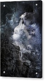 Rooted Acrylic Print by Gun Legler