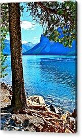 Rooted In Lake Minnewanka Acrylic Print by Linda Bianic