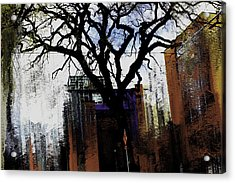 Rooted In The Unstable Acrylic Print by Terence Morrissey