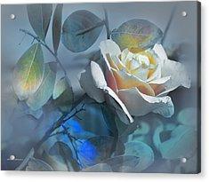 Rosas De Septiembre Acrylic Print by Alfonso Garcia