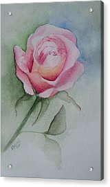 Rose 1 Acrylic Print by Nancy Edwards