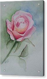 Rose 1 Acrylic Print by Nancy Edwards