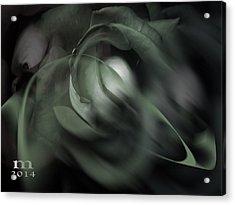 rose 18X24 1 Acrylic Print