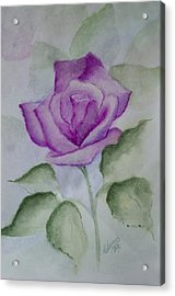 Rose 3 Acrylic Print by Nancy Edwards