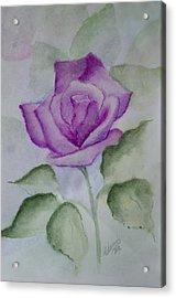 Rose 3 Acrylic Print by Nancy Edwards