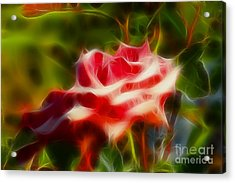 Rose 6168-fractal Acrylic Print by Gary Gingrich Galleries